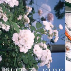 柴田聡子inFIREと羊文学の対バン