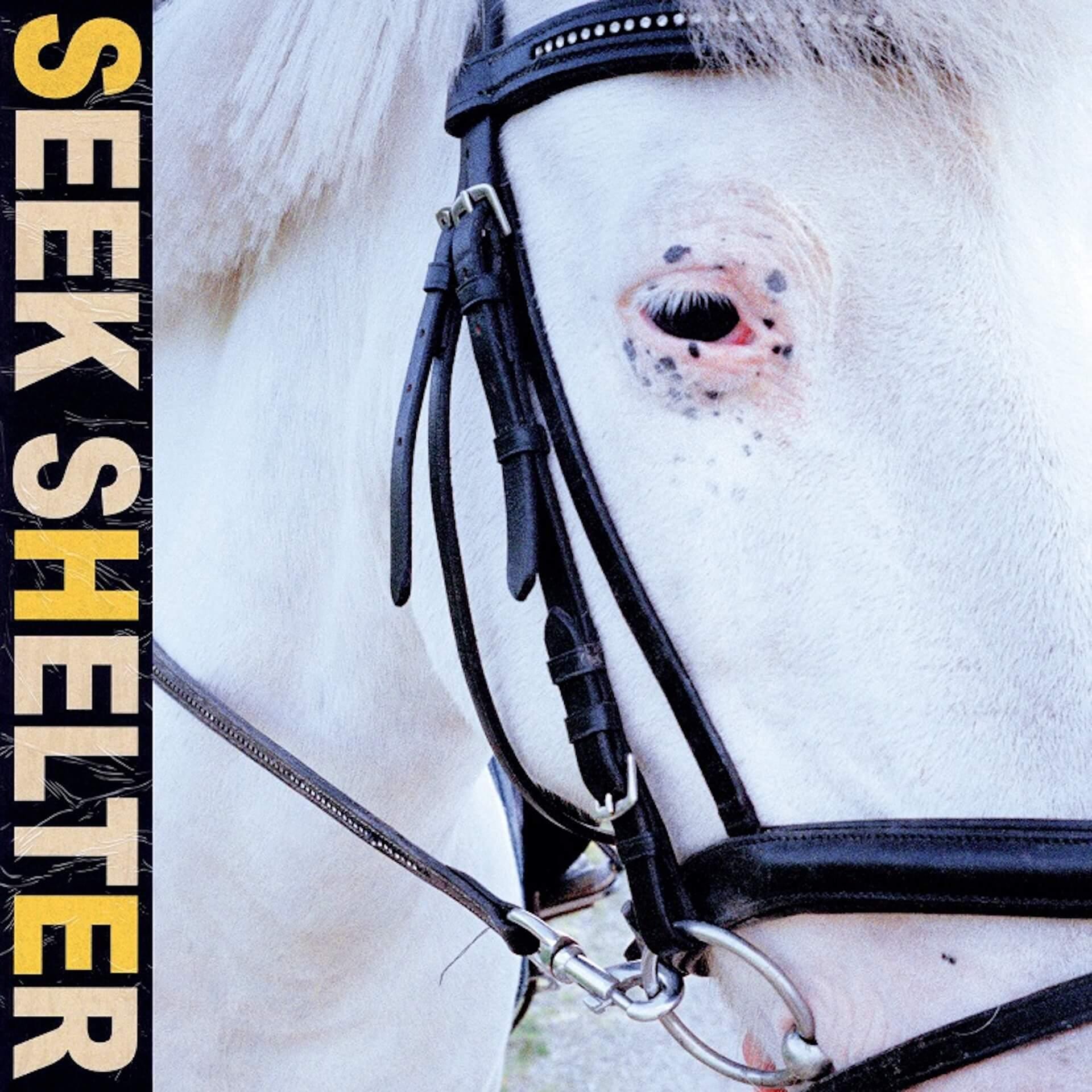 Iceageの5thアルバム『Seek Shelter』が発売!ストリーミングライブ<Seek Shelter: Live From Copenhagen>を開催 music210507_iceage-210507_1
